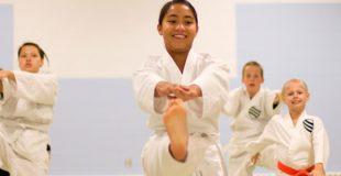 Karate-e