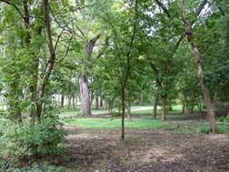 Millstone Park