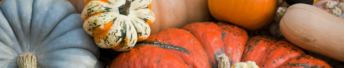 squash-and-pumpkins
