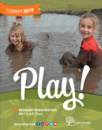 Summer Play Book Cover