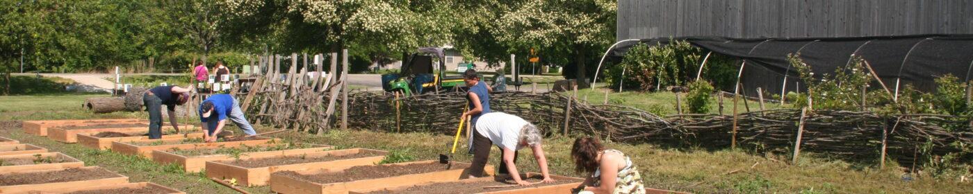Pantry Garden Planting